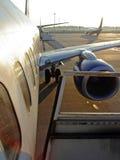 Morning Flight Stock Photos