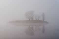 Morning fog Stock Photography