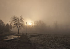 Morning fog. Early morning in Kecskemet Royalty Free Stock Photography