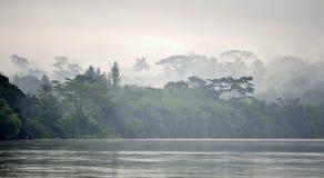 Morning fog on the African river Sangha. Sangha River. Morning fog on the African river Sangha. Congo Stock Photos