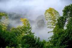 Morning fog Royalty Free Stock Photography
