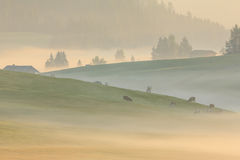Morning fog in the Alps, Dolomites, Italy Royalty Free Stock Photos