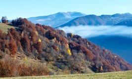 Morning fog in autumn Carpathian. Stock Images
