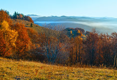 Morning fog in autumn Carpathian. Royalty Free Stock Images
