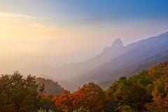 The morning fog and autumn forest of ancestral mountain. The photo taken in China's Hebei province qinhuangdao city,ancestral mountain scenic area,the queen Royalty Free Stock Image