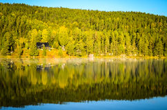Morning fog in autumn landscape norway Royalty Free Stock Photos
