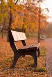 A morning fog bench sunsire stock image