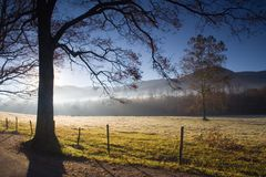 Morning Fog Cades Cove. Morning scene with fog over pasture and horses at Cades Cove, Tennessee Stock Images