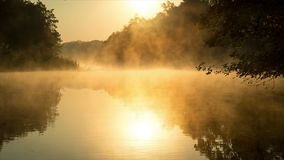 Morning fog on a calm river, sepia toned. Morning fog on a calm river, tranquil scene on Severskiy Donets river, Ukraine, natural background with sepia image stock footage