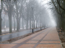 Morning fog in the city alley Royalty Free Stock Images