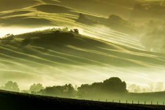 Morning fog in countryside Tuscany royalty free stock photos