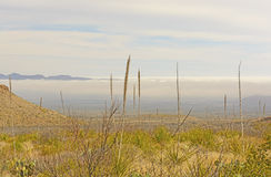 Morning Fog in a Desert Valley Stock Photography