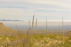 Morning Fog in a Desert Valley Stock Photography