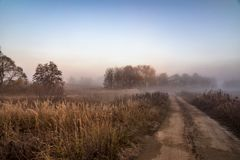 Morning fog in forest. Misty fog in the morning country road landscape stock image