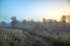 Morning fog in forest. Misty fog in the morning country road landscape stock images