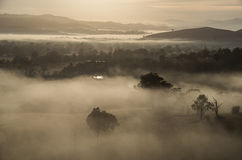 Morning fog in Goulburn River valley in Victoria, Australia Royalty Free Stock Photo