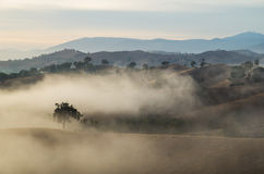 Morning fog in Goulburn River valley in Victoria, Australia Stock Photography