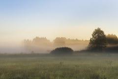 Morning fog in the Kruszyniany, Poland Royalty Free Stock Photos