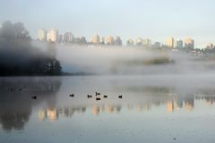 Morning fog lake. A morning fog lake view in Burnaby stock photo