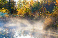 Morning fog by the lake Royalty Free Stock Images