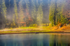 Morning fog on the lake in spruce forest Stock Photo