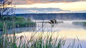 Morning fog on the lake at sunrise. Background stock photography