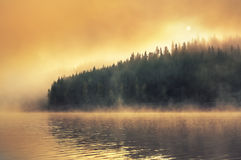 Morning fog on the lake Stock Photography