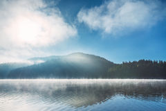 Morning fog on the lake Royalty Free Stock Image