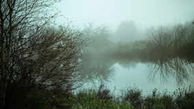 Morning fog on a lake Stock Photo