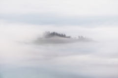 Morning fog. On the mountain stock photo