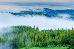 The morning fog Mountain View in Thailand. Stock Photo