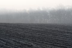 Morning fog over arable land Royalty Free Stock Images
