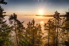 Morning fog Royalty Free Stock Image