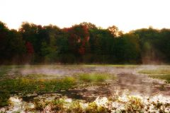 Morning fog over the lake with water lilies. Fairy forest behind a foggy lake. Water lilies grow on the surface of the water. Mystical Dawn in USA, Michigan stock photography
