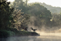 Morning fog over a river in Kennilworth Royalty Free Stock Photography