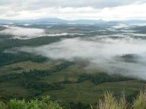 Morning fog over savannah royalty free stock photo
