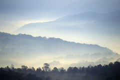 Morning fog over Scenic Highway US Route 219, WV Stock Images