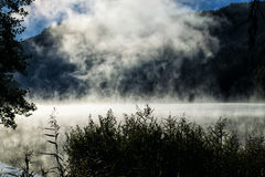 Morning fog over the smal lake Royalty Free Stock Photography