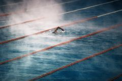 Morning fog over the Swimming pool Stock Photography