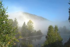 Morning fog over the Turquoise Katun with blue sky and beautiful forest Royalty Free Stock Photography