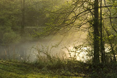 Morning fog on Pond Royalty Free Stock Image