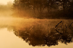 Morning fog on river Royalty Free Stock Photos