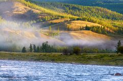 Morning fog on river in northern Mongolia Royalty Free Stock Image