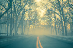 Morning Fog on Road stock image