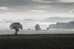 Morning fog in rural Bavaria, Germany Royalty Free Stock Photography