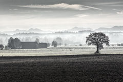 Morning fog in rural Bavaria, Germany Stock Image