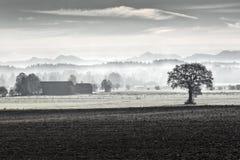 Morning fog in rural Bavaria, Germany Stock Image