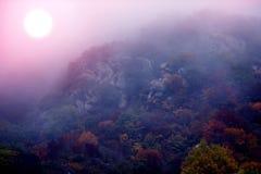 Morning fog of sunrise stock image