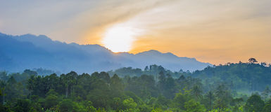 Morning fog with sunrise Royalty Free Stock Images