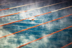 Morning fog at Swimming pool Royalty Free Stock Photography